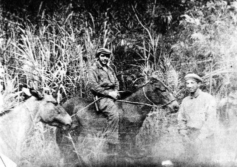 che-guevara-montado-caballo_lrzima20161005_0051_11