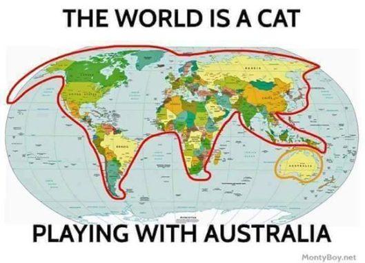 mapa-gato-planeta-tierra-580x419.jpg
